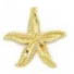 Starfish - Gold Charm